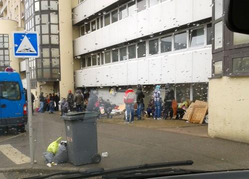 afflux de clandestins,au pôle asile,les messins disent stop,propreté à metz-nord,des carences inadmissibles,le chantier du mettis,insalubrité lamentable,rue pierre-et-marie-curie,foye soleil,pour personnes âgées,crèche,petit poucet,communauté d'agglomération,de metz-métropole,dératisation,aire de dépose,sacs poubelles,tri et collecte,marion maréchal-le pen,en visite en moselle,samedi 16 mars 2013,bong sang ne sait mentir,mars 1962,devoir de mémoire,dimanche 11 mars 2013,commémoration,des morts de la guerre d'algérie,les associations de rapatriés,et d'anciens combattants,cimetière de l'est,à metz,les patriotes français,se souviennent,ne pas oublier,les bourreaux,de la guerre d'algérie08 mars 2013,journée mondiale de la femme,intervention de françoise grolet,du groupe front national,au conseil régional de lorraine,aux séances plénières des 14 et 15 février 2013,françoise grolet dans un engagement local,soutien à la police nationale,aux policiers messins,contre les voyous,le conducteur du 4x4,trafic de stupéfiants,paris